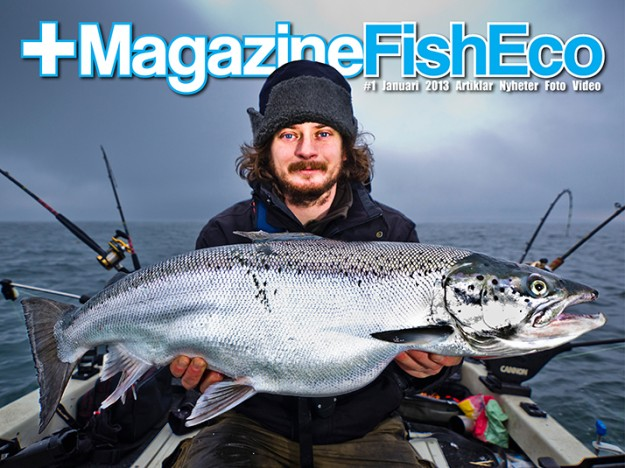 +magazineFishEco no1 2013