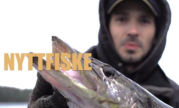 nyttfiske