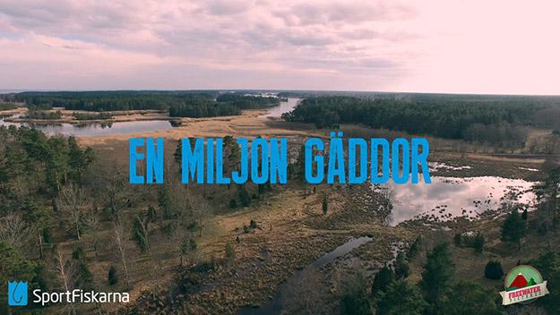 miljon_gaddor