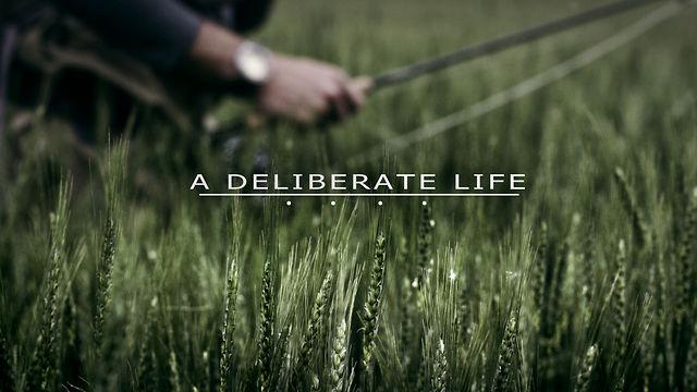 A Deliberate Life