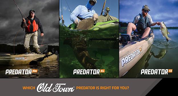 predator_Series